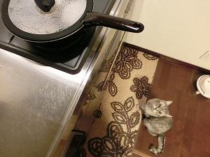 蒸し鶏調理中