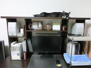 常態の机の棚